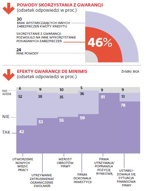 kredyt z gwarancja de minimis co trzeba wiedziec - grafika gwarancja de minimis